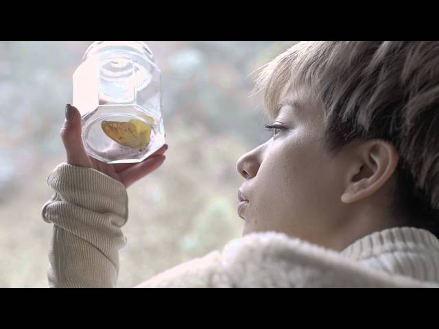short movie「Winter's Butterfly」