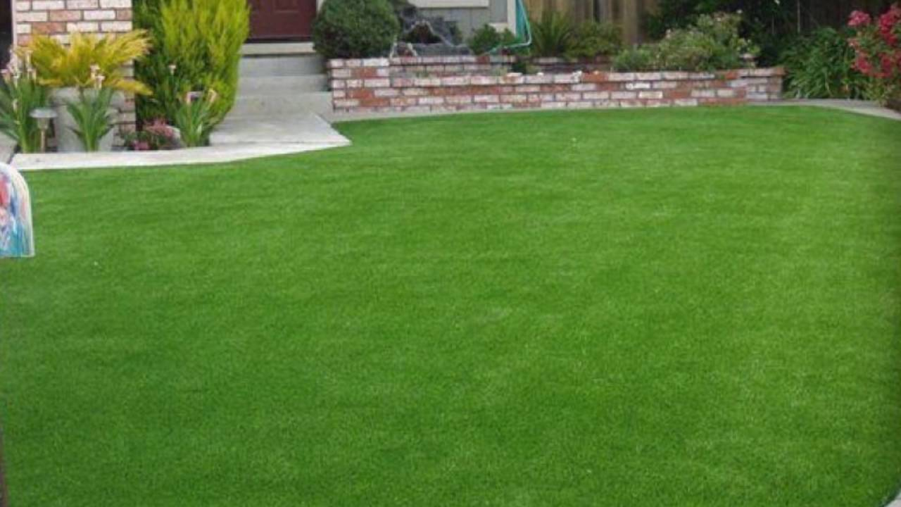 Artificial turf pros and cons - Benefits Of Synthetic Turf