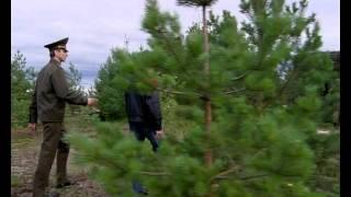 Олег Пальмов в сериале