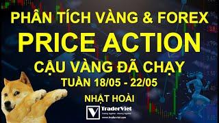 ✅ Phân Tích Vàng & Forex Theo Price Action - Cậu Vàng Đã Chạy - Tuần 18/05-22/05