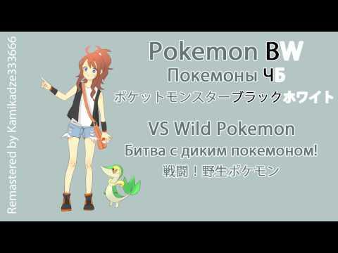 Pokemon BW - VS Wild Pokemon Remastered