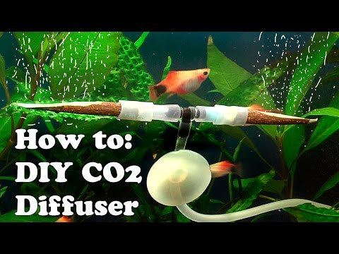 How to DIY cheap CO2 DIFFUSER using Rowen twigs Part 1