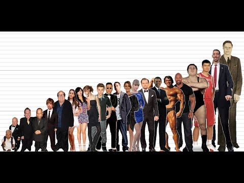 Celebrity Height Comparison Chart (10K Subscribers Special)