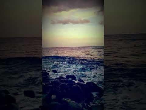 Hello Jamaica ♡♡♡