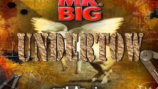 Mr. Big - Undertow (Lyrics)