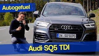 AUDI SQ5 V6 TDI REVIEW - Autogefuel