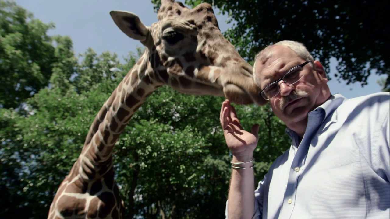 Download The Zoo Sneak Peek | The Zoo