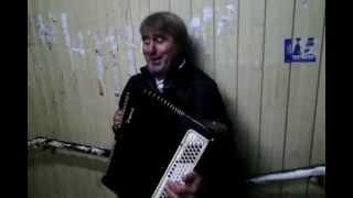 Соловьи поют заливаются уличный музыкант баянист