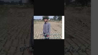 Shahbaz Butt