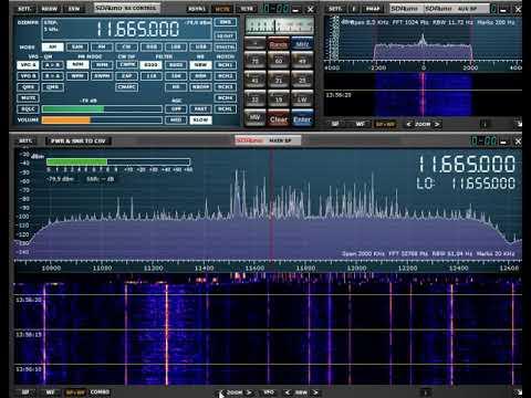 RTM Wai FM 13:44 Utc 11665 Khz 10 September 2019