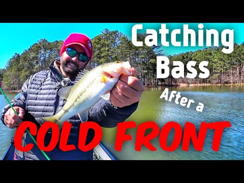 Prespawn Bass Fishing After A Massive Cold Front