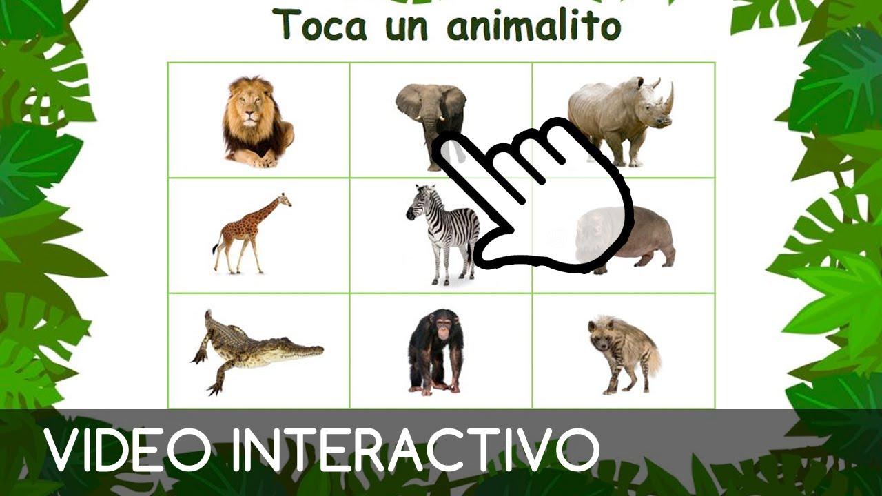 Safari Para Ninos Juego Interactivo Y Educativo Para Ninos