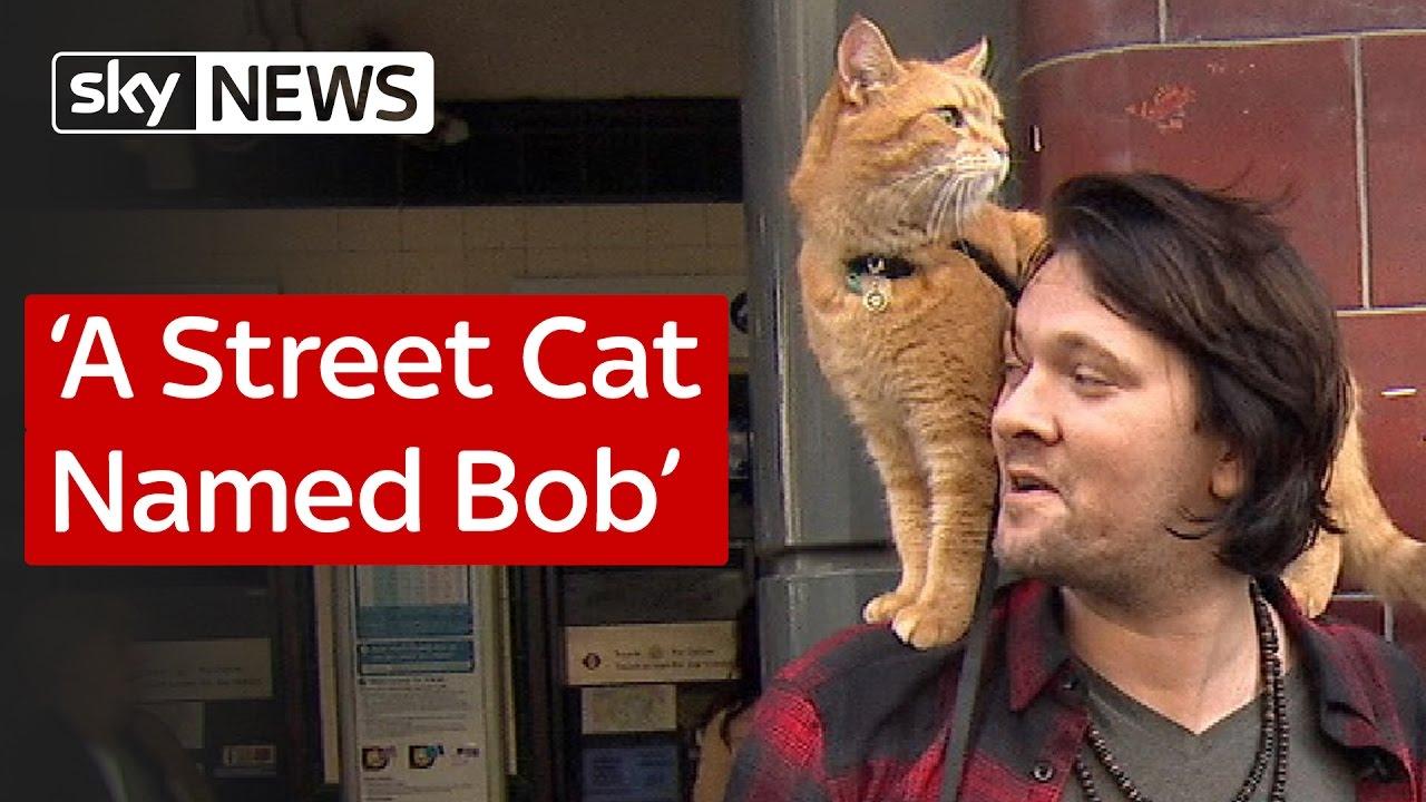 Street Cat Bob Movie