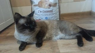 Цены на кошачий корм впечатляют!!! Даже Тимофей в шоке!!!
