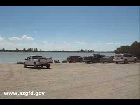 Ashurst lake arizona youtube for Az game and fish fishing report