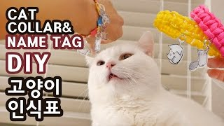 고양이 인식표 만들기 DIY CAT COLLAR & NAME TAG
