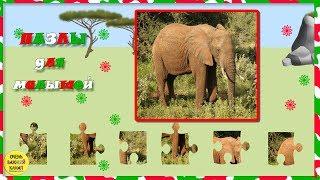 Пазлы для малышей. Слон. Развивающие мультфильмы для детей.