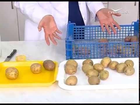 Удачные заметки 25.04.2017. Озеленение картофеля. Обрезка смородины. Дачные советы