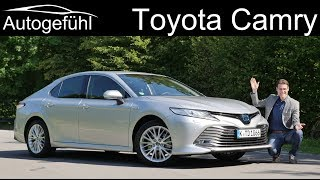 Toyota Camry Hybrid FULL REVIEW Camry XV70 - Autogefühl
