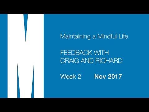 Mindful Life: Feedback from Craig and Richard - Week 2 - Nov 2017