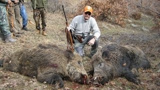 T.A.A.K Kalecik Domuz Avı / Wildboar Driven Hunting in Turkey