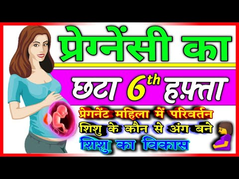 6th week pregnancy symptoms and Baby growth and development in hindi