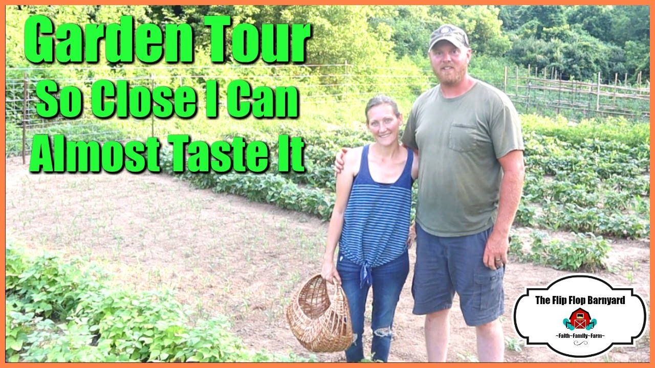 So Close I Can Almost Taste It | Garden Tour
