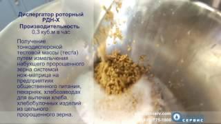Диспергатор РДН-Х для измельчения пророщенного зерна