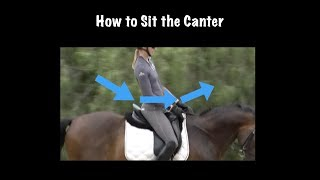 Canter Seat: How to Sit the Canter