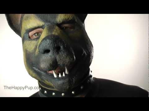 How To Choose A Human Pup Collar
