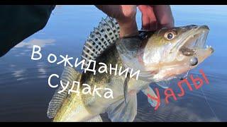 Рыбалка на реке Нура в ожидании Судака св Уялы