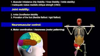 Работа #мышц ног, #анатомия, Muscle motion, the #muscles of the legs #Anatomy (Field Of Study)