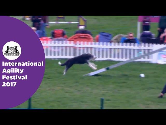 Olympia Semi Final - G3-7 ABC Large - Part 1 | International Agility Festival 2017
