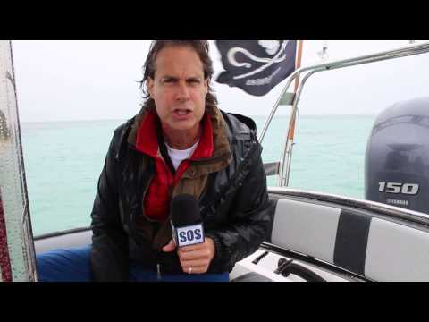 Earth Calling SOS - Protecting Sharks on Bruce the Rib