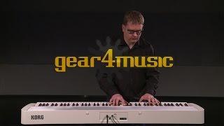 Korg B1 Digital Piano (Performance)