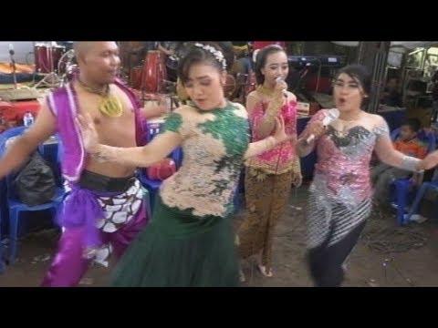 Hai Tayo _All Artis Gokil - Dangdut Lareksa Music Mp3