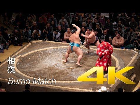 Sumo Match - Tokyo - 相撲
