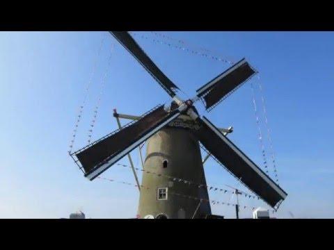 Molen de Windvang op 12 maart