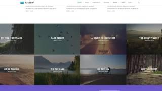 Themeforest - Salient Responsive Multi Purpose Theme