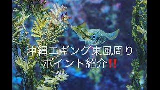 【エギング】 沖縄エギング#3 東風のポイント紹介!! thumbnail