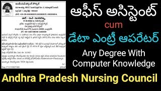 Office Assistant cum Data Entry Operator Job in Andhra Pradesh Nursing Council
