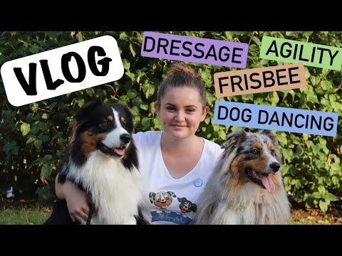 VLOG : DÉMONSTRATION AU SALON DES ANIMAUX (Agility, Frisbee, Dog dancing, Dressage) ♡