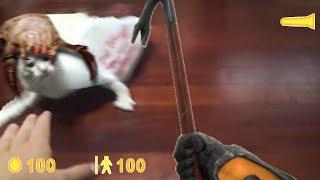 Cat in the bag [half-life meme]