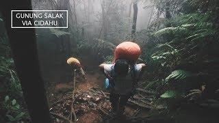 Download Video MISTIS??? - Pendakian Gunung Salak via Cidahu MP3 3GP MP4