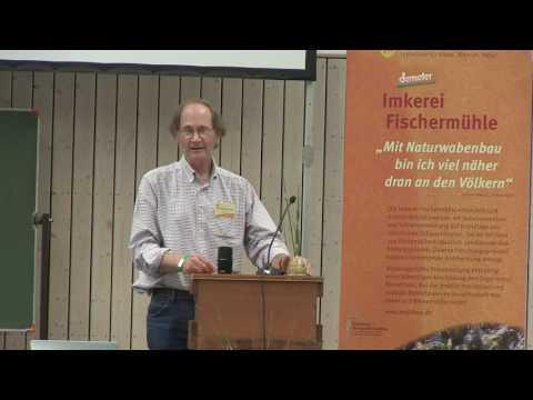 Schwarmintelligenz: Wahl der Behausung, Entscheidungsprozess und Einzug (Thomas D. Seeley)