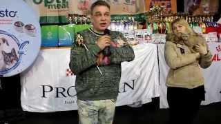 Международный Чемпионат Породистых Кошек 28/02-01/03.2015 WCF,питомник STAR-LINE
