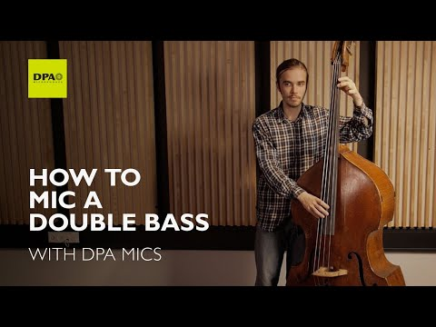 How To Mic A Double Bass