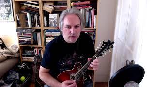 Martin Wynne's (reel) on mandolin