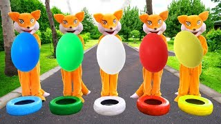 Five Little Foxes Jumping on the Wheels with Colorful Eggs