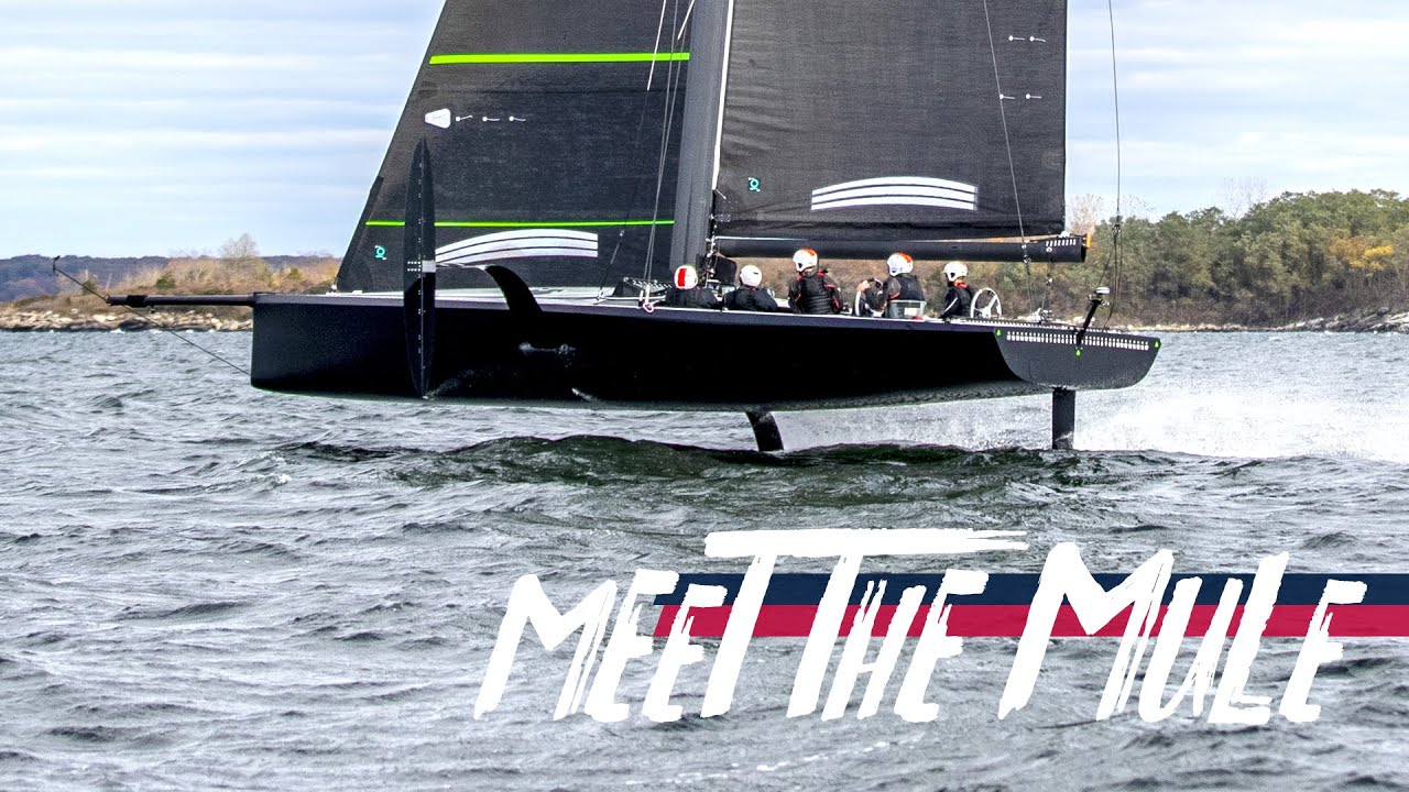 MEET THE MULE Latest News 36th Americas Cup Presented